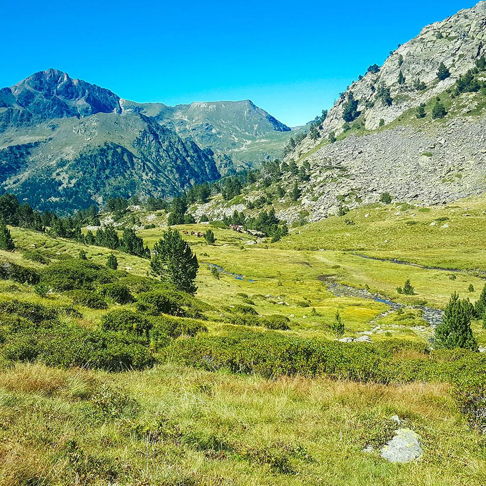 Berglandschaft in Andorra